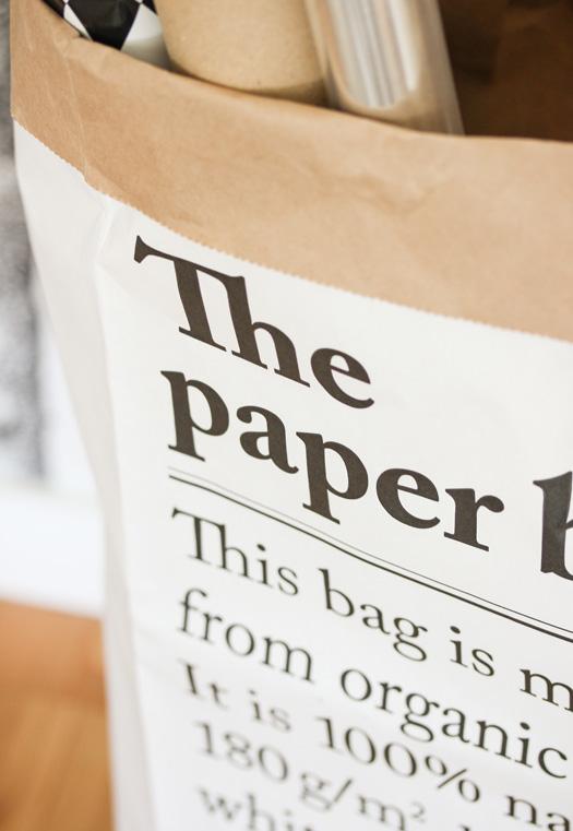 paper_sack_3